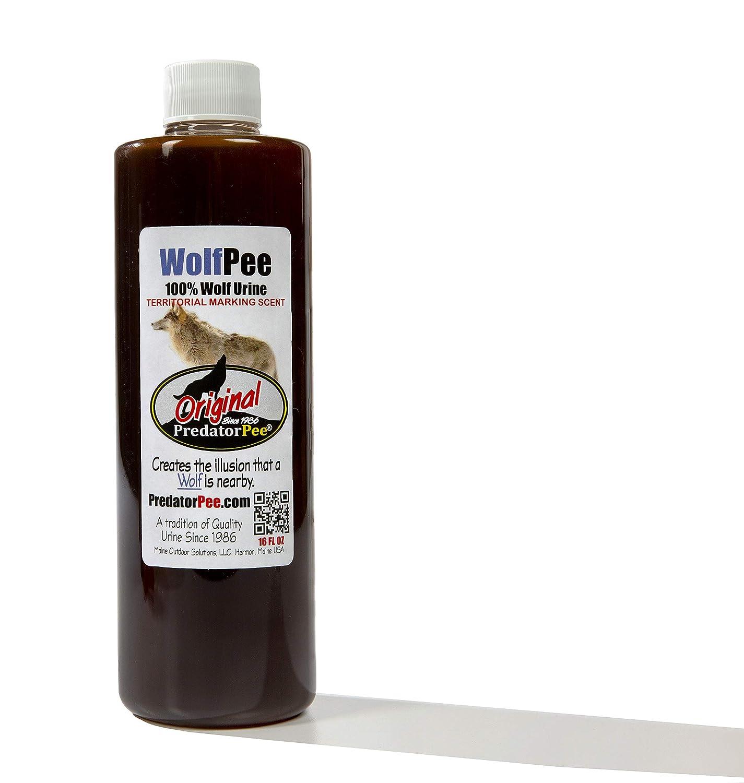 Amazon.com: Predator Pee 100% orina de lobo - Aroma de ...