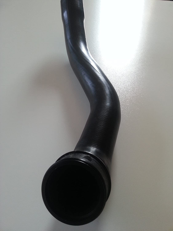 Fripa Wandhalter f/ür Putzrollen aus Metall blau Bis 40 cm breite Putztuchrollen Sehr stabil gefertigter Putzrollenwandhalter