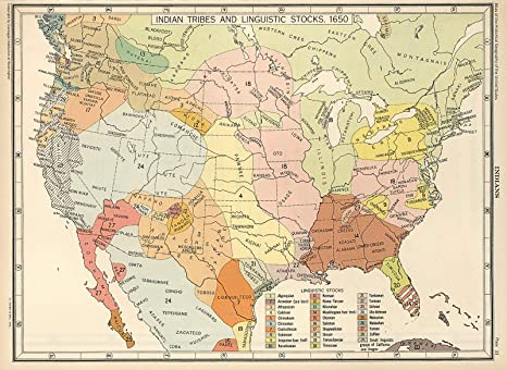 1650 Map US Indian Tribes /& Linguistic Languages Stocks Native American Poster
