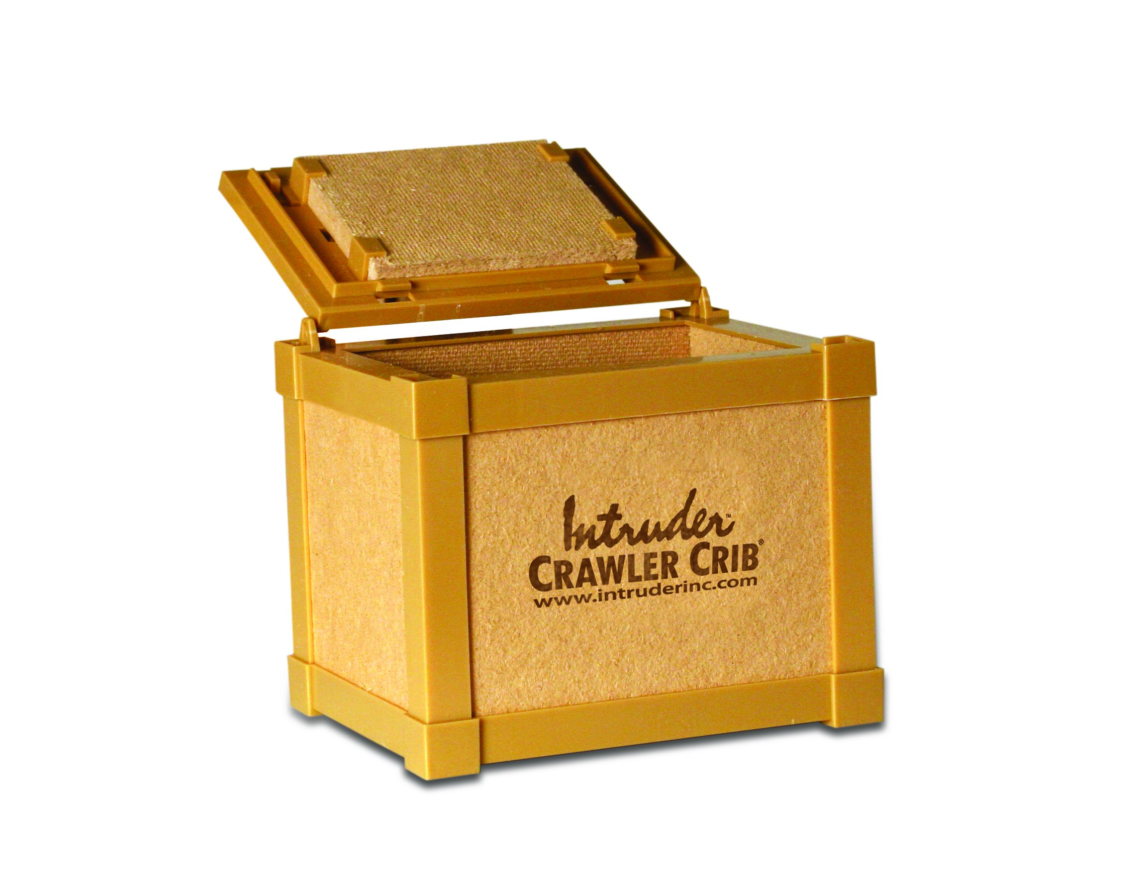 Intruder NightCrawler Worm Bait Box, Keeps Bait Fresh, Packed with Good N' Lively Worm Bedding, 8-inch x 6-inch x 7-inch by Intruder