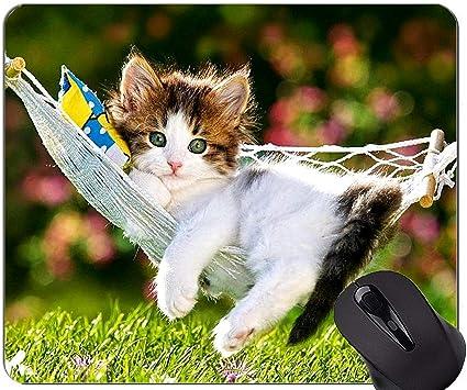 Yanteng Alfombrilla de ratón con el Borde Cosido, Hamaca Gatito Animal Lindo Gato Hierba Home Office Accesorios de computadora Alfombrillas