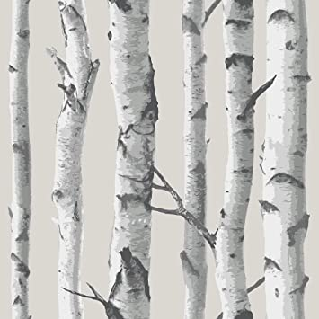 Nuwallpaper Nu1650 Birch Tree Peel And Stick Wallpaper Taupe Amazon Com