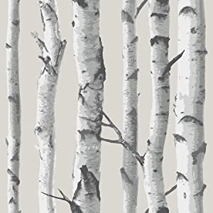 NuWallpaper NU1650 Birch Tree Peel and Stick Wallpaper