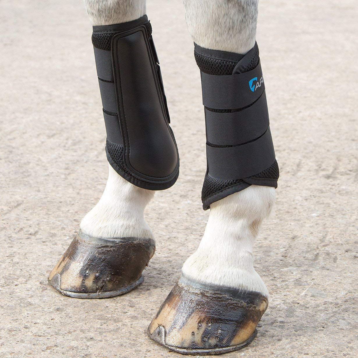Black Pony Black Pony Shires Air Motion Brushing Boots