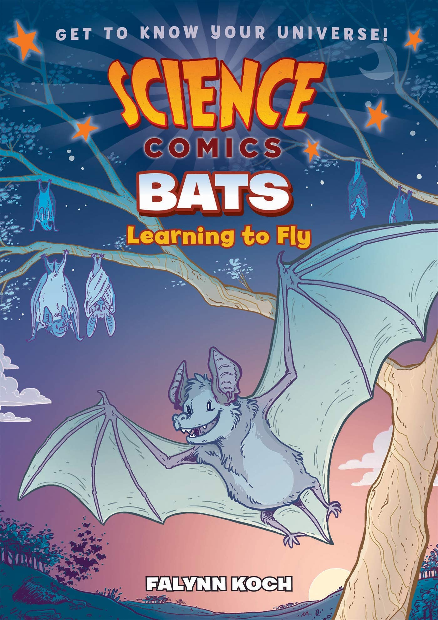 Bats Learning to Fly book cover