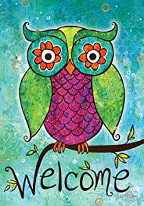 "Toland Home Garden 119432 Rainbow Owl 12.5 x 18 Inch Decorative, Garden Flag (12.5"" x 18"")"