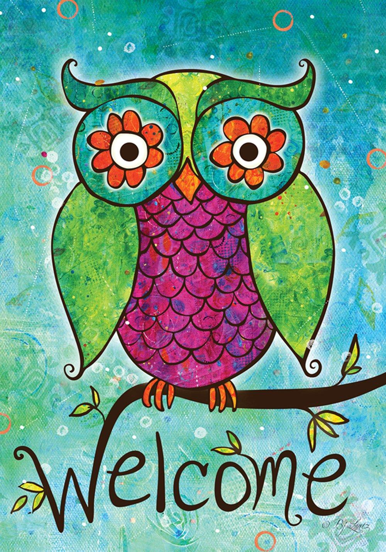 Amazon.com : Toland Home Garden Rainbow Owl 12.5 x 18 Inch ...