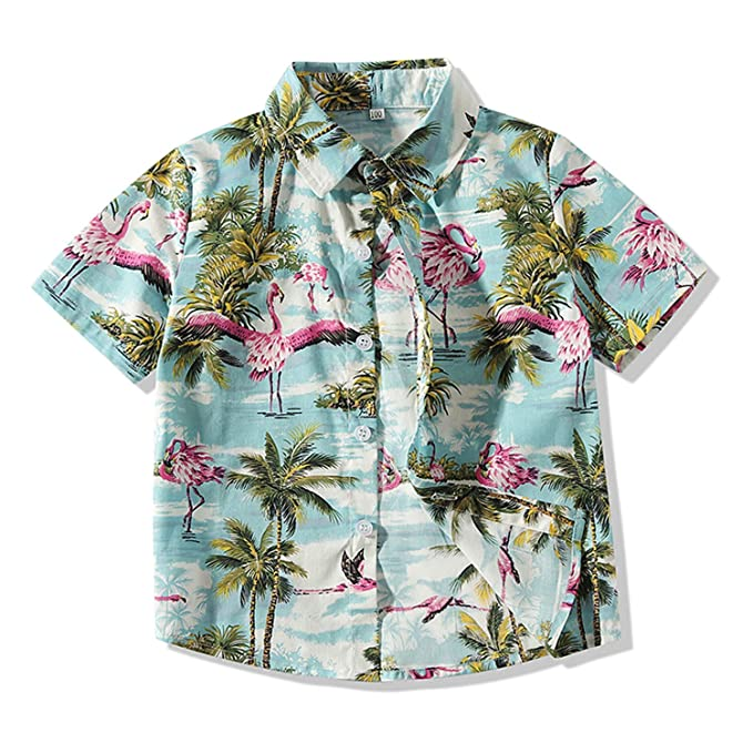 Amazon.com: Camiseta de bebé Aloha Hawaiana con estampado de ...