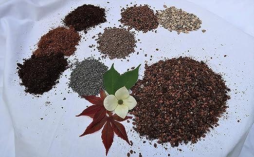 Waterbirds Bonsai Tierra para freiland Bonsai, Bonsai sustrato, Bonsai compartimento de negocios: Amazon.es: Jardín