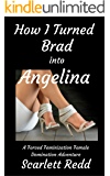 How I Turned Brad into Angelina: A Forced Feminization Forced Crossdressing Adventure