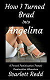 How I Turned Brad into Angelina: A Forced Feminization Female Domination Adventure