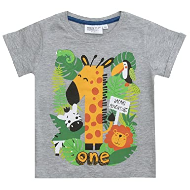 Minikidz Boys Birthday Age Number T Shirt Grey Safari 1 Year
