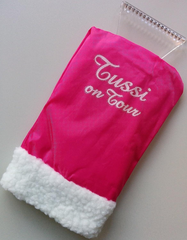 Tussi On Tour Eiskratzer Mit Handschuh Auto
