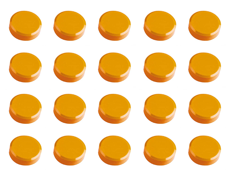 600 g Haftkraft hellblau Facetterand-Magnete MAULpro rund 20 St/ück 30 x 10 mm bruchsicherer Kunststoff