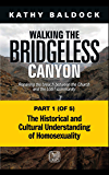 Walking the Bridgeless Canyon: The Historical and Cultural Understanding of Homosexuality: Part 1 of 5