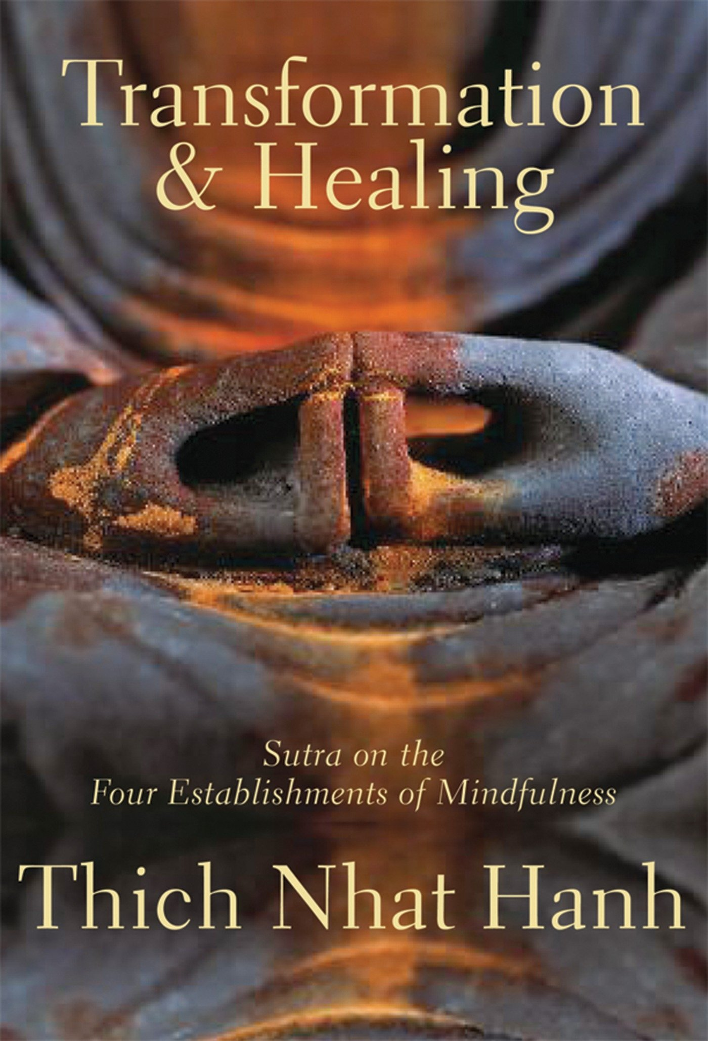 Amazon transformation and healing sutra on the four amazon transformation and healing sutra on the four establishments of mindfulness 9781888375626 thich nhat hanh books fandeluxe Images