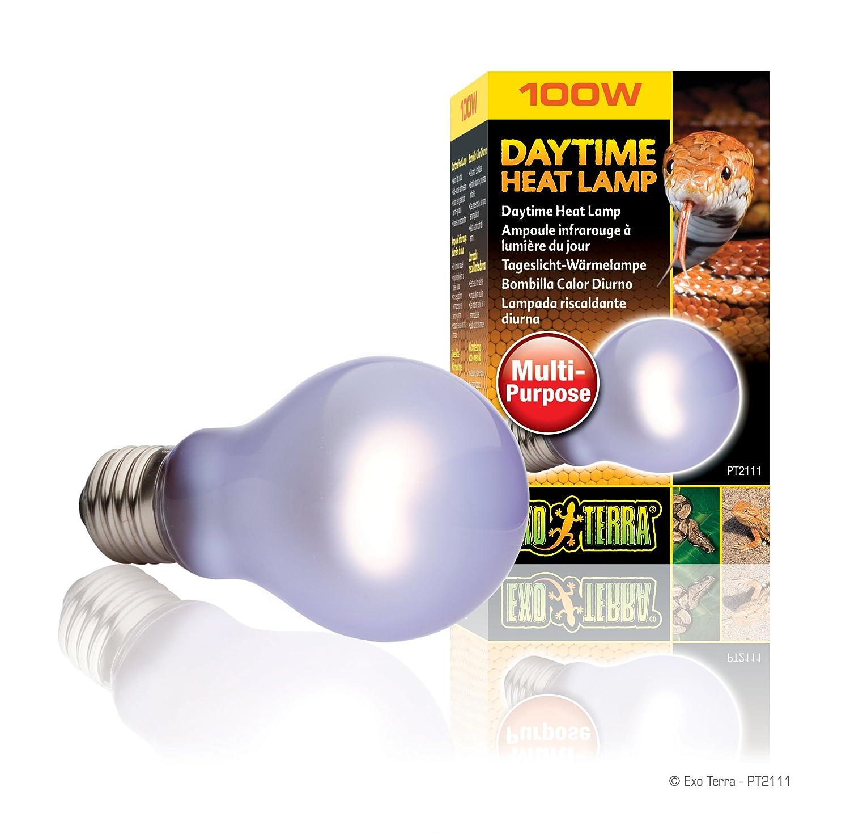 the home b depot volt philips par lamp watt incandescent heating n heat bulbs bulb light