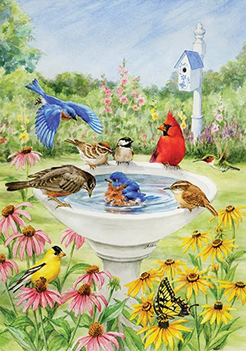 Toland Home Garden Birdy Dippin 12.5 x 18 Inch Decorative Spring Summer Bird Bath Flower Garden Flag