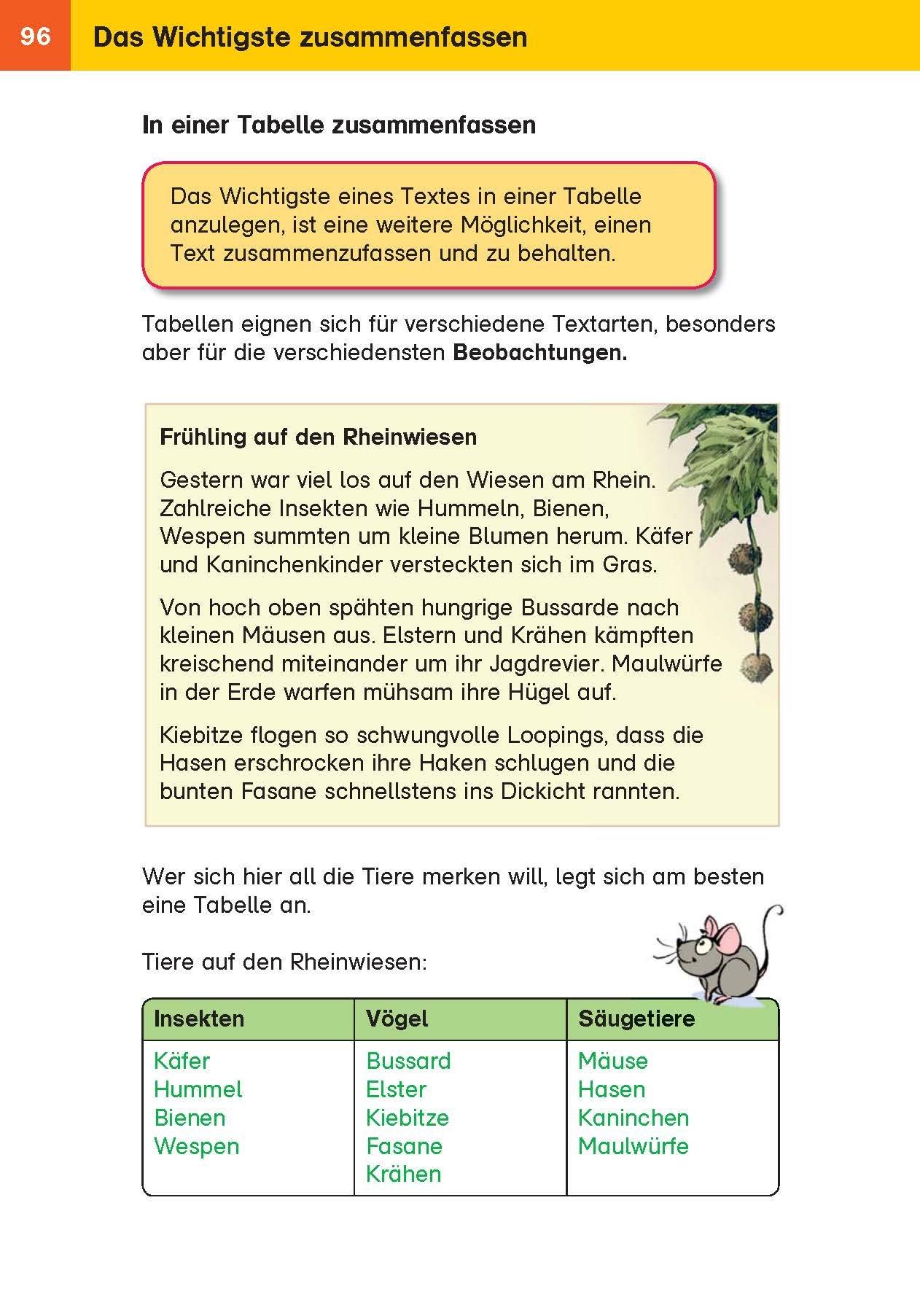 Klett Das Super-Grundschul-Wissensbuch: 9783129493731: Amazon.com: Books