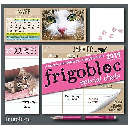 Calendrier Bac Es 2019.Frigobloc 2019 Special Chats Calendrier D Organisation