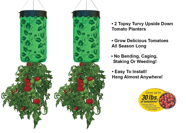 Amazon Com Allstar Innovations Topsy Turvy Upside Down Tomato
