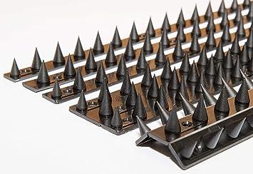 The Cactus - Conjunto de 10 pinchos para muros y vallas, de 4.5 a 13.5 m, color negro: Amazon.es: Jardín