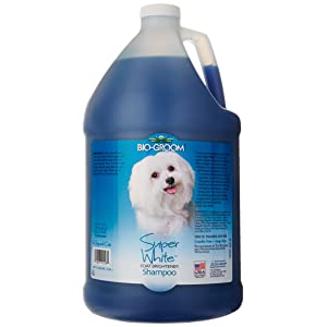 Best Dog Shampoos 2017