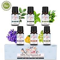Reines natürliches biologisches ätherisches Öl - Betope Ätherische Öle 100% Set für Ultraschalldiffusoren Aromatherapie 6 Aromen Lavendel, Teebaum, Eukalyptus, Zitrone, Süßorange, Pfefferminze
