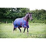 Gallop Trojan 200gsm Medium Weight Standard Turnout Rug