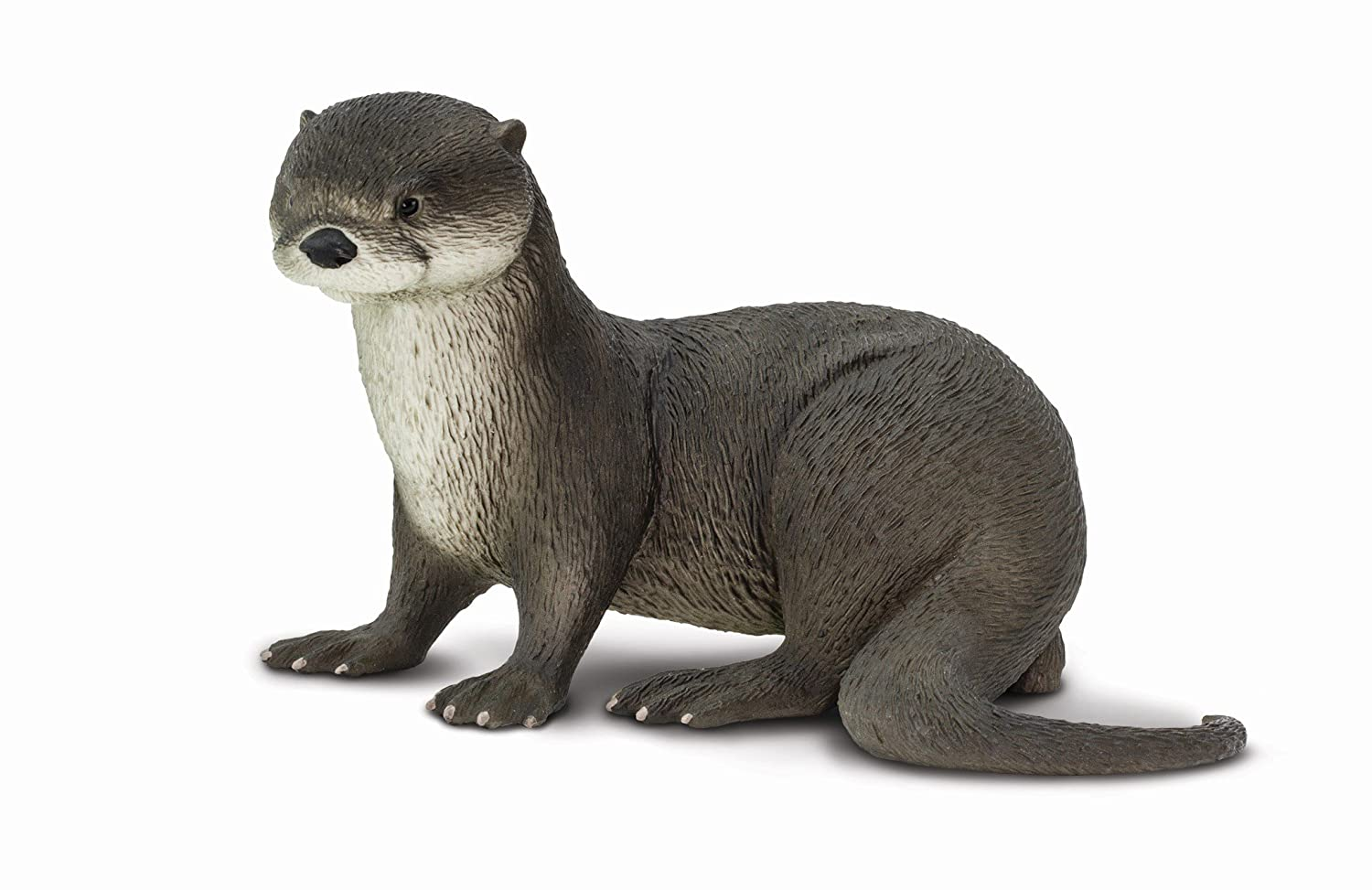 Safari Ltd. River Otter - Realistic Hand Painted Toy Figurine Model - Quality Construction from Phthalate, Lead and BPA Free Materials - For Ages 3 and Up