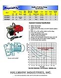 Hallmark Industries MA0438X-9 Jet Pump with