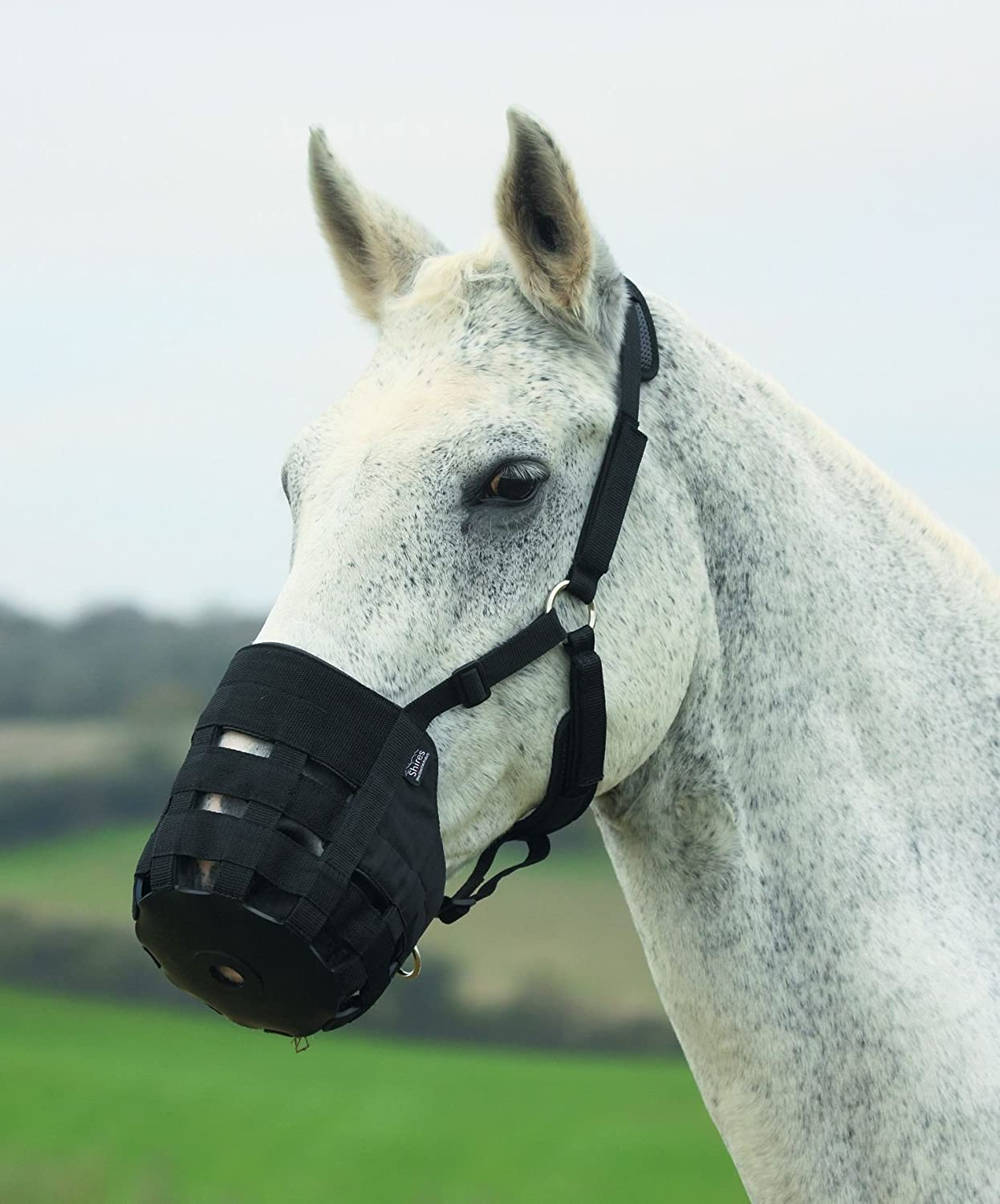 Shires Nylon Grazing Muzzle Black Shires Equestrian Products