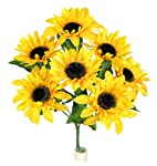 admirado por naturaleza girasol tallo Full Bloom, oro