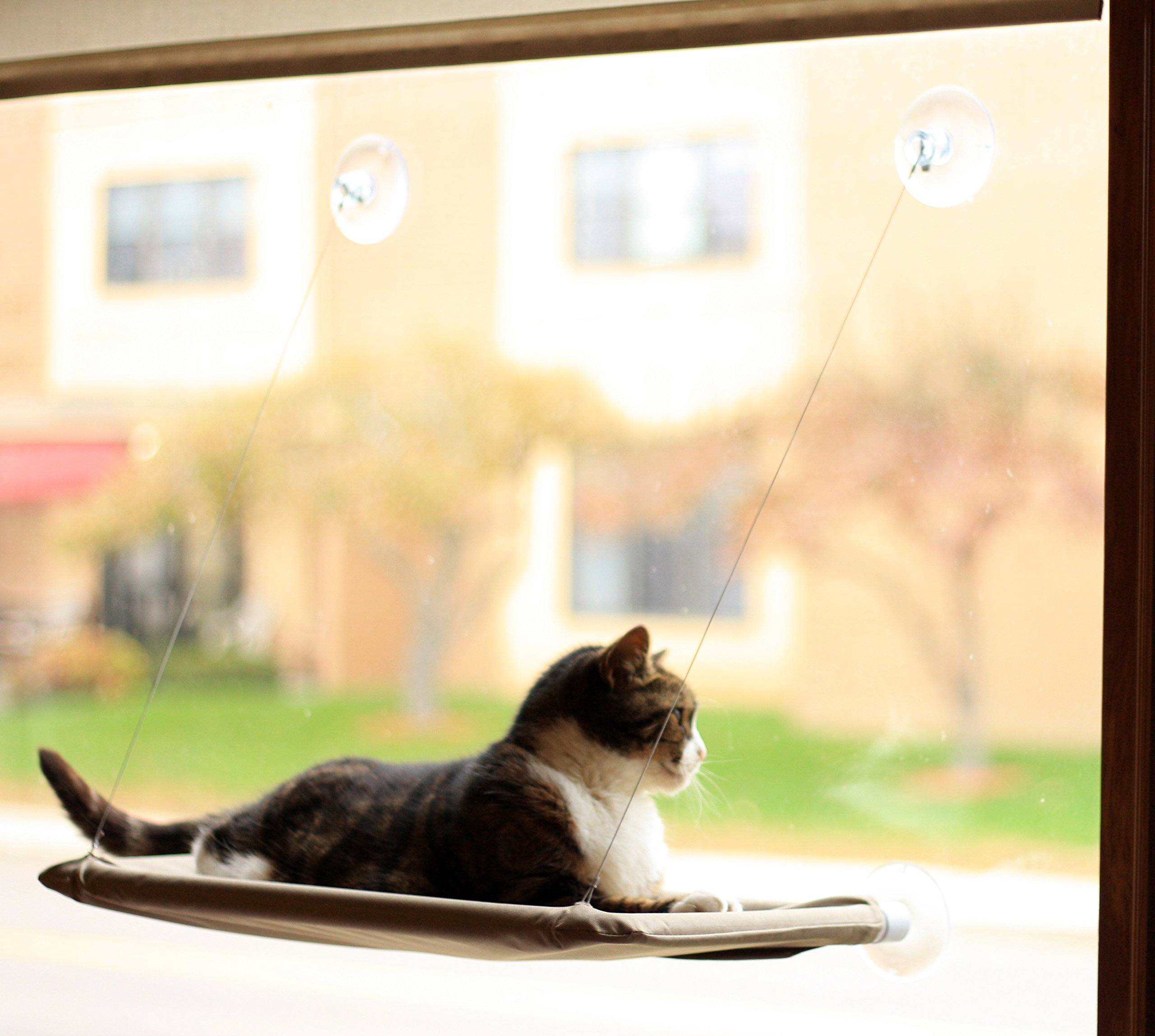 Evelots Window Mounted Cat Bed, Window Kitty Perch, Strong & Durable, Beige