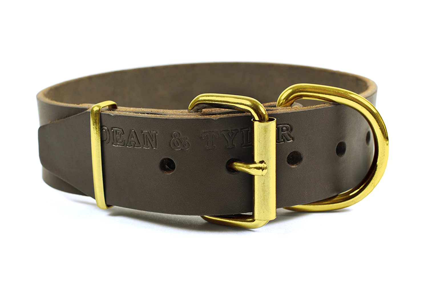 Dean & Tyler Bumps and Bits Brass Leather Dog Collar, 40 by 2-Inch, Brown