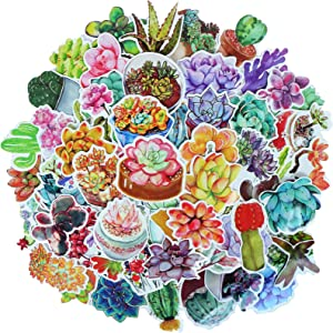 YAMIOW Cute Waterproof Vinyl Stickers for Guitar Laptop Fridge Car Luggage Book Water Bottle Folders Decal Graffiti Stickers (70 pcs for Succulents Plant Style)