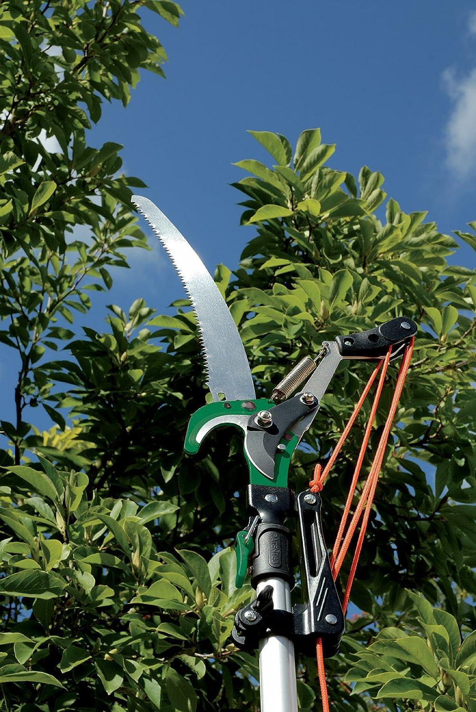 Draper Expert 32mm Diameter Tree Pruner with Telescopic Handle and Cutting Capacity Draper Tools DRA45334