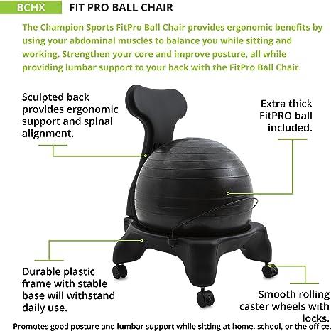Balance Yoga Ball Desk Chair w// Lockable Caster Wheels /& Back Support