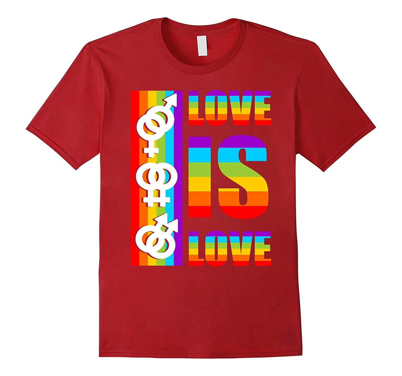 Pride LGBT Equality Shirt Love Is Love LGBT Rights Shirts-Vaci