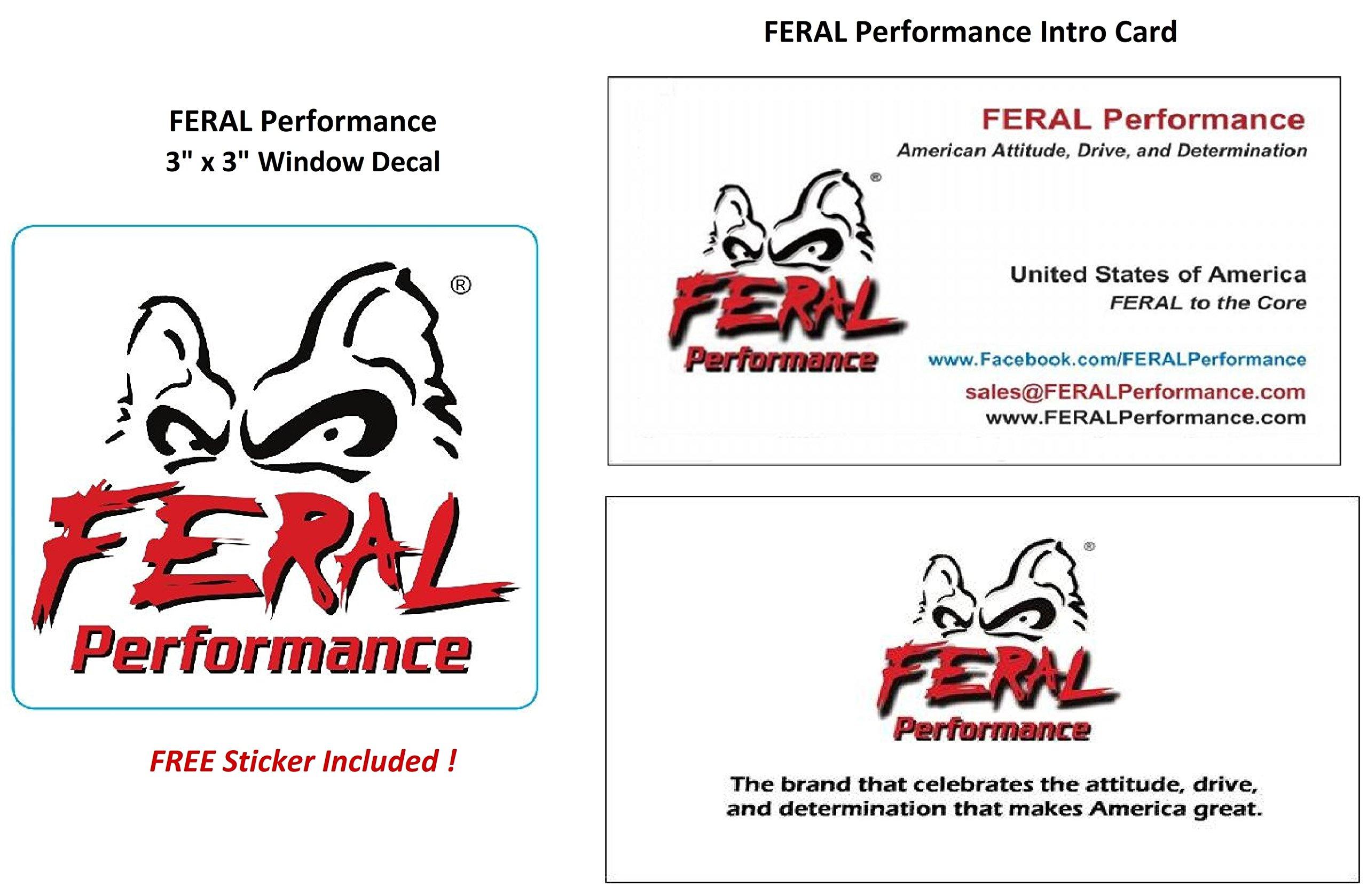 FERAL ATV Gear 2'' x 6'' Spread Eagle 3-Way Hitch