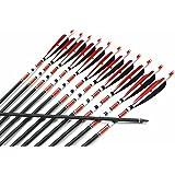 "AC 12x New Carbon Arrows 31""80(cm) Spine 500 Archery Arrows Shaft Target Practice & Screw Tips"