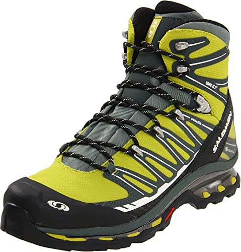 chaussures de séparation 03ac6 110b7 Salomon Men's Cosmic 4D Gtx Hiking Boot