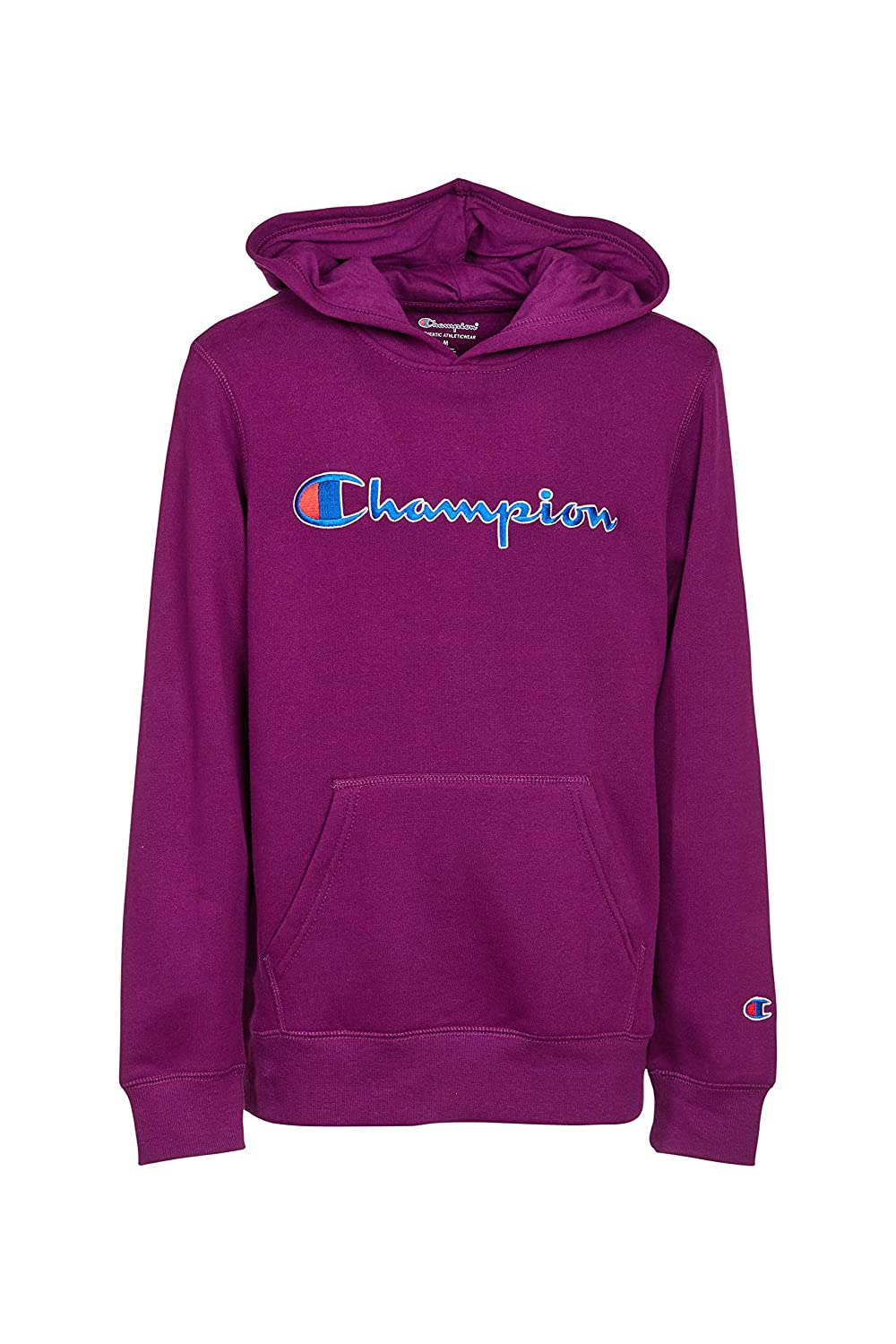 Champion Girls Hooded Sweatshirt Script Logo Heritage Collection Big and Little Girls 327459