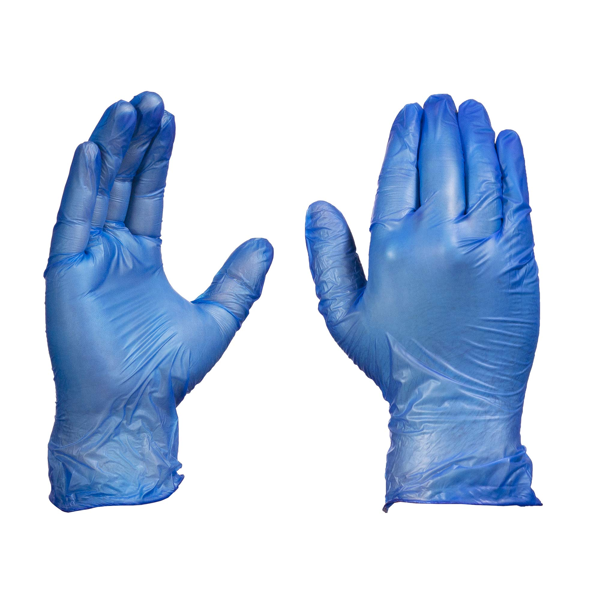 AMMEX Vinyl Disposable Gloves - Powder-Free, Food Safe, Non-Sterile, 4 mil Thick, Large, Blue (Case of 1000) by GLOVEPLUS (Image #1)