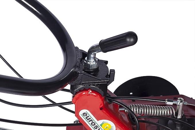 Eurosystems Euro 102 Motoazada Motor Honda GX 160 fresa de 95 cm ...