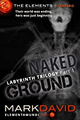 Labyrinth 1: Naked Ground: Part 1 of the Labyrinth trilogy (The Elements) Kindle Edition