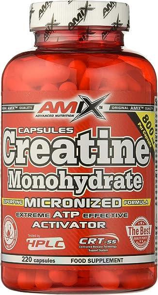 AMIX - Creatina Monohidratada - com plemento Alimenticio - Mejora el Rendimiento Físico - Ideal para Deportistas - 100% Micronizada - Proteína Masa ...