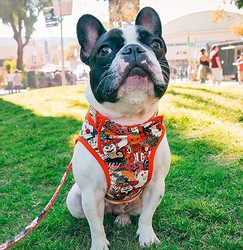 Amazon.com  Halloween dog harness vest- Custom Handmade harness  Handmade fb56db6dc261