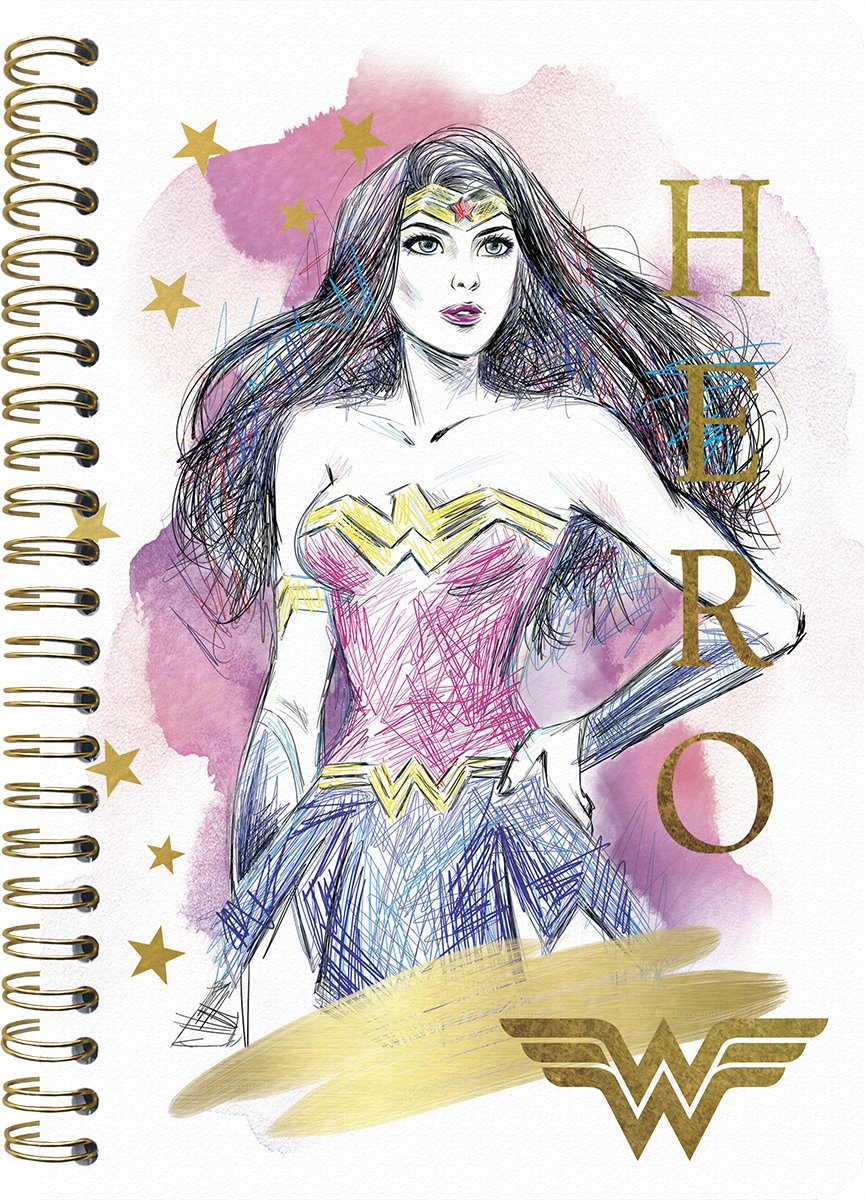 Read Online 2019 Wonder Woman Weekly/Monthly Planner - 5 x 8 PDF