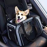 PETTOM Trasportino Cane Gatto Pet Carrier Pieghevole Impermeabile Borsa Tracolla Imbottito Morbido Viaggio in Aereo Auto Treno per Animale Taglia Piccola (43 * 28 * 28 cm, Grigio + Nero)